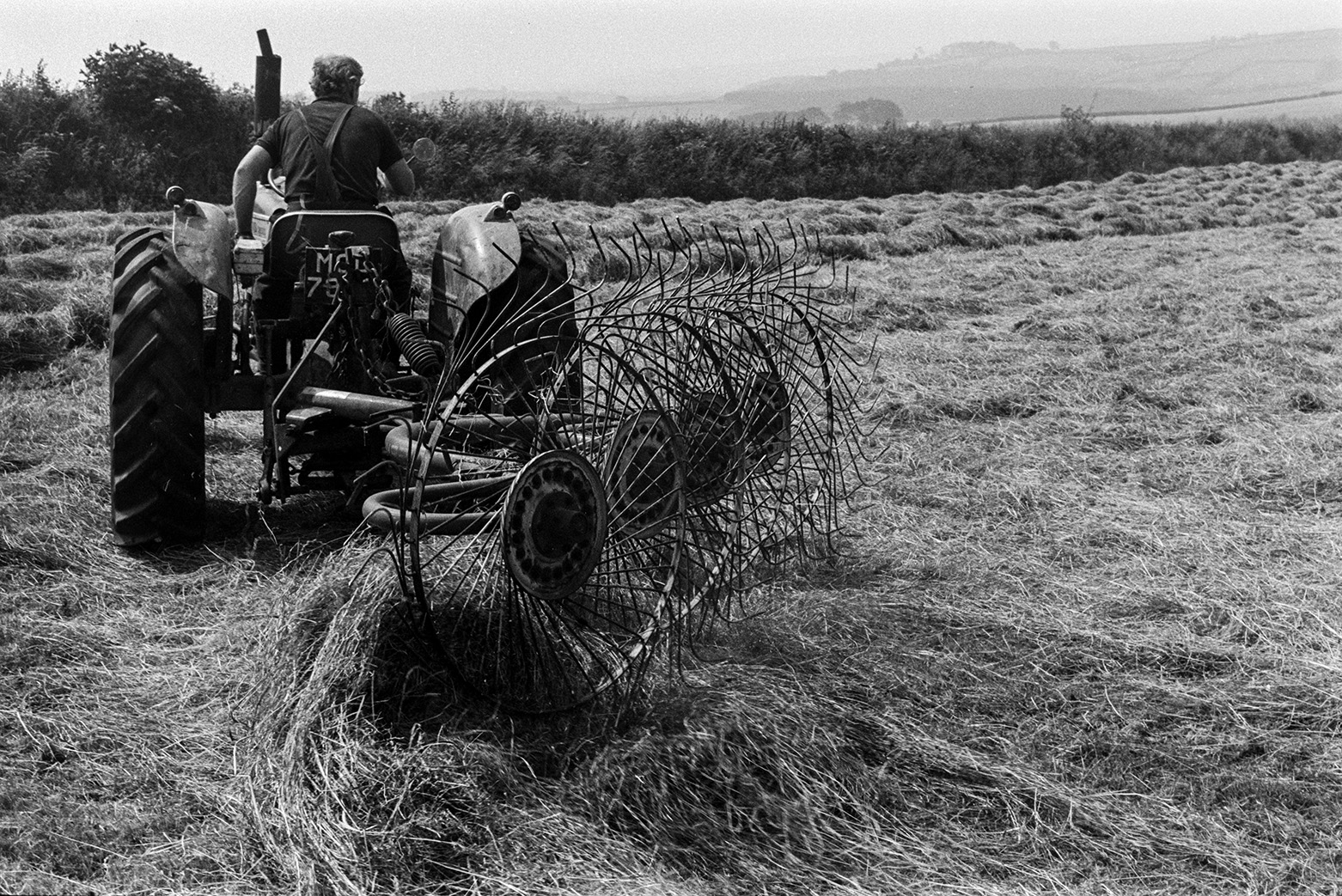 A man driving a tractor and hay whisk to turn hay, in a field at Beaford.