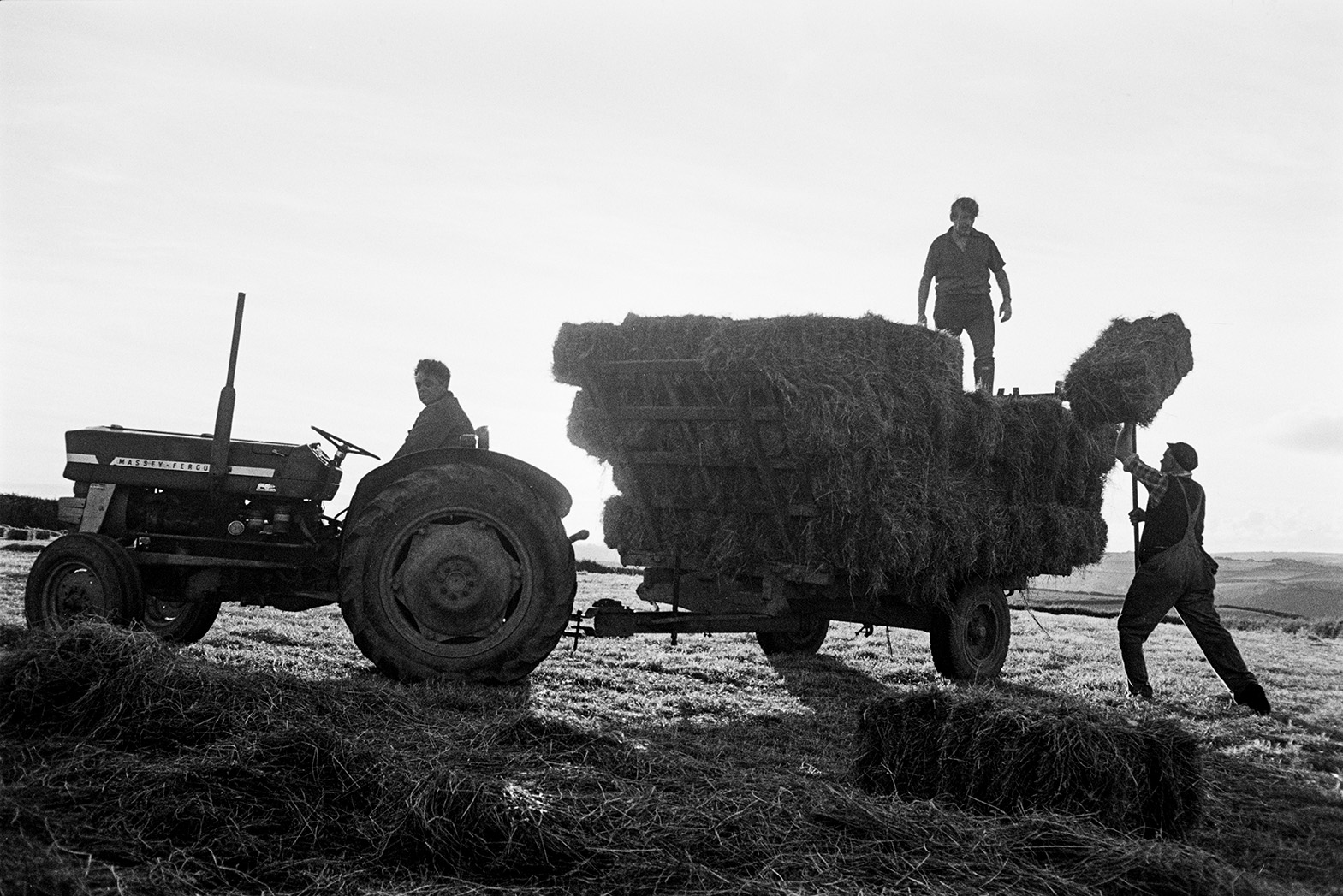 Men loading hay bales onto a trailer using pitchforks, in a field at Beaford. One man is sat on the tractor.