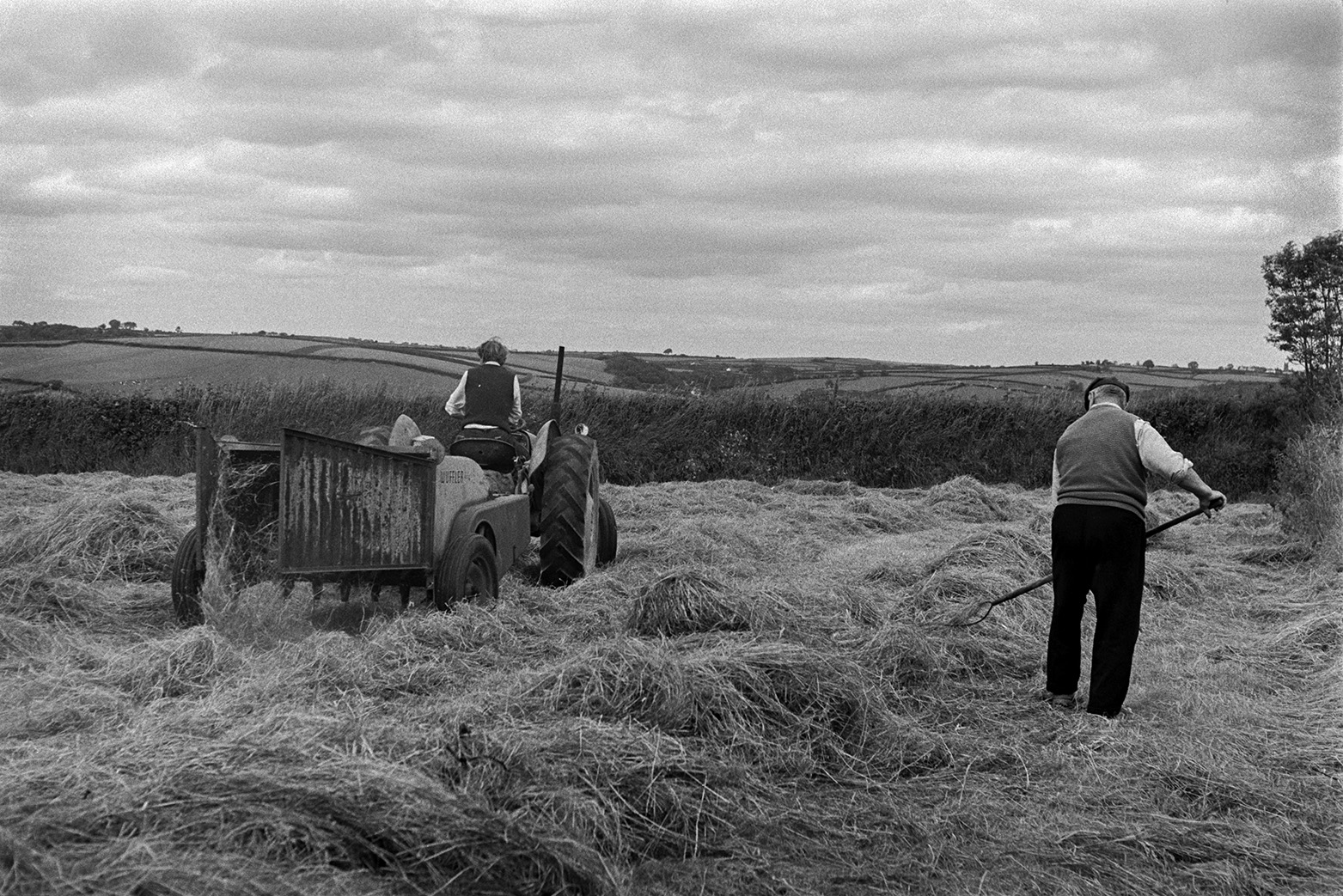 A man turning hay using a pitchfork, to prepare it for baling, in a field at Mill Road Farm, Beaford. Ivor Bourne is driving a tractor and windrow machine to create rows for baling. The farm was also known as Jeffrys.