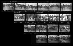 Contact Sheet 335 by Roger Deakins