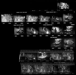 Contact Sheet 32 by