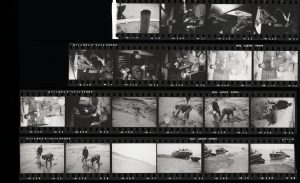 Contact Sheet 41 by
