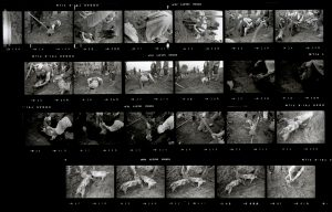 Contact Sheet 46 by