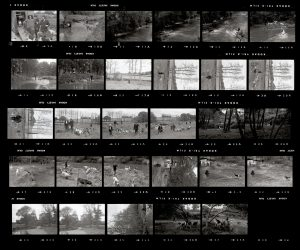 Contact Sheet 55 by