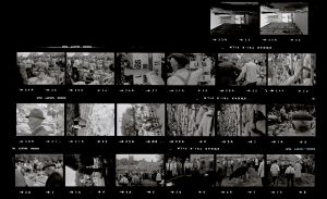 Contact Sheet 59 by