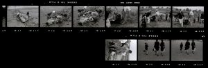 Contact Sheet 64 by