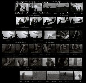 Contact Sheet 66 by