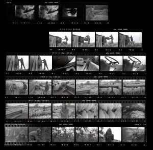 Contact Sheet 70 by
