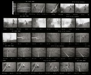 Contact Sheet 71 by