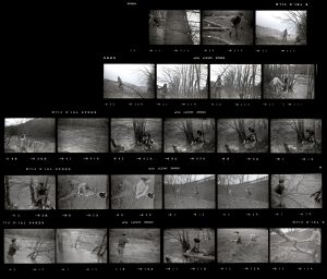 Contact Sheet 72 by
