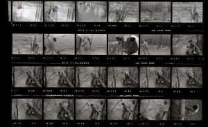 Contact Sheet 75 by