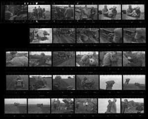 Contact Sheet 105 by