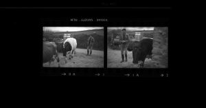Contact Sheet 108 by