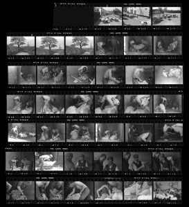 Contact Sheet 116 by