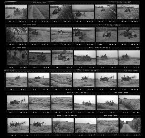 Contact Sheet 117 by