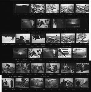 Contact Sheet 122 by