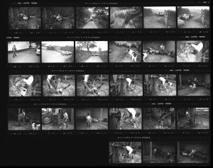 Contact Sheet 129 by