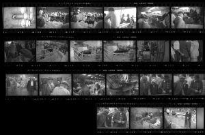 Contact Sheet 134 by