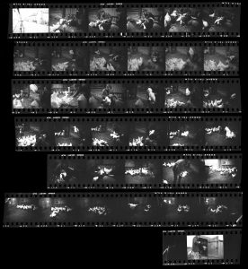 Contact Sheet 145 by