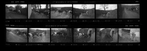 Contact Sheet 159 by