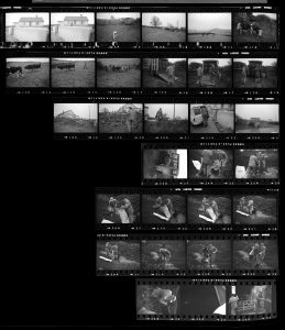 Contact Sheet 182 by