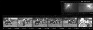 Contact Sheet 244 by