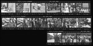 Contact Sheet 245 by