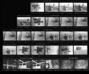 Contact Sheet 262 by