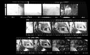 Contact Sheet 265 by