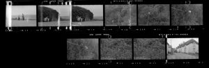 Contact Sheet 273 by