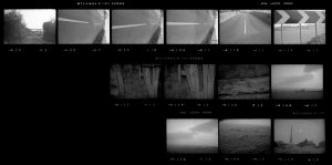 Contact Sheet 275 by