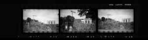 Contact Sheet 276 by