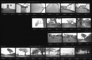 Contact Sheet 278 by