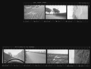 Contact Sheet 279 by