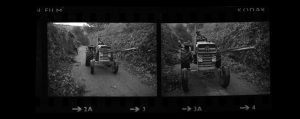 Contact Sheet 281 by