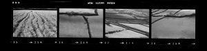 Contact Sheet 287 by