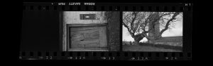 Contact Sheet 288 by