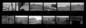 Contact Sheet 289 by
