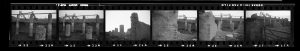 Contact Sheet 293 by