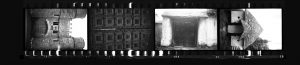 Contact Sheet 295 by