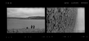 Contact Sheet 302 by