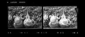 Contact Sheet 303 by