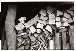 Woodpile by James Ravilious