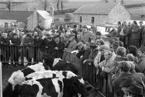 Farm sale by James Ravilious