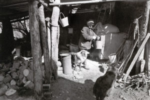 Archie Parkhouse in his shed by James Ravilious