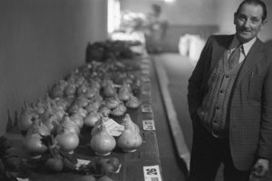 Bill Smale with his prize winning onions by James Ravilious