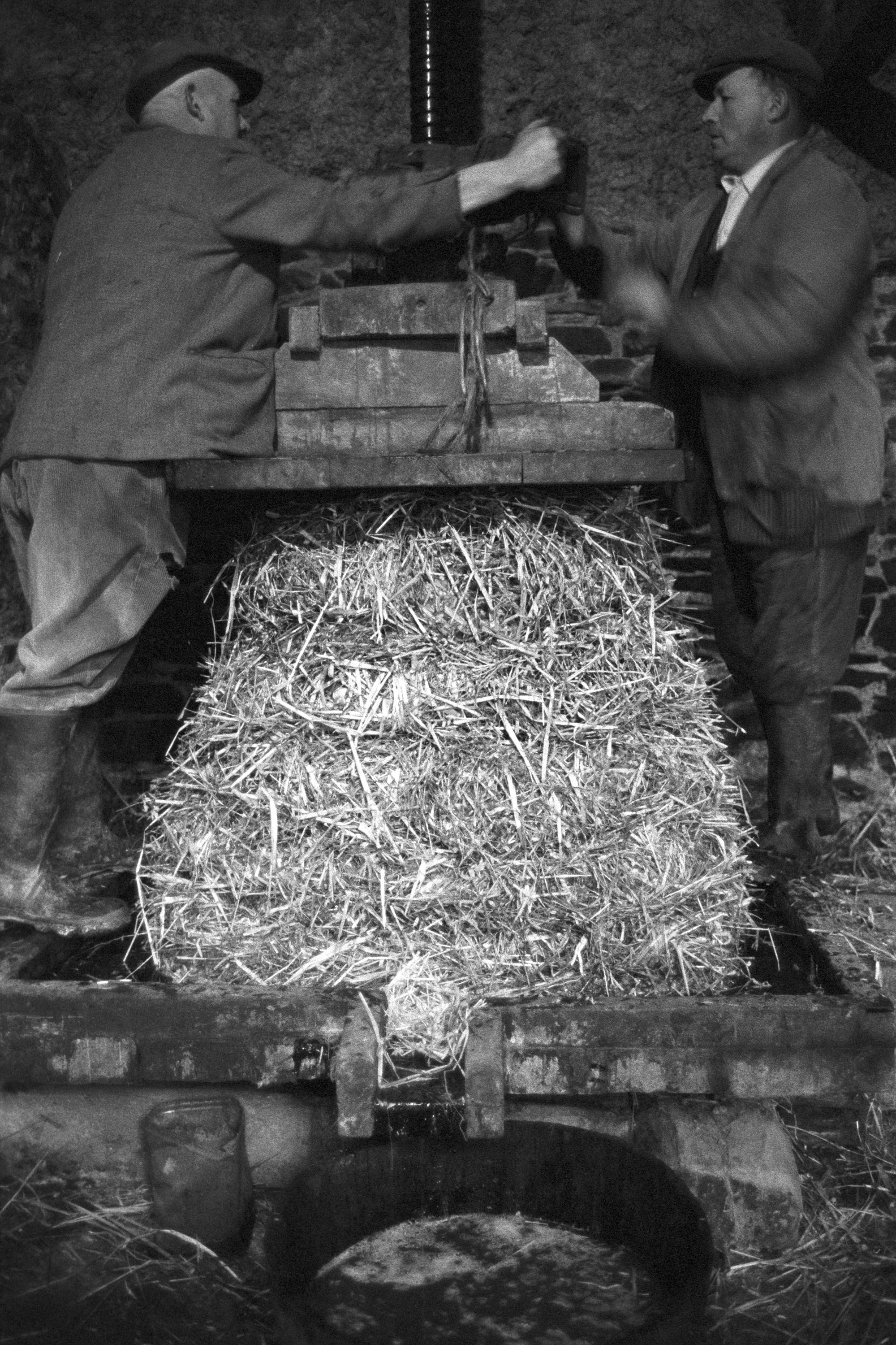 Men using cider press, using straw cheese.<br /> [Albert Eastman and John Eastman working a cider press at Hacknell, Burrington. They are pressing cider through a straw cheese ]
