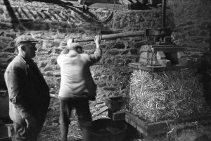 Albert and John Eastman making farm cider by James Ravilious