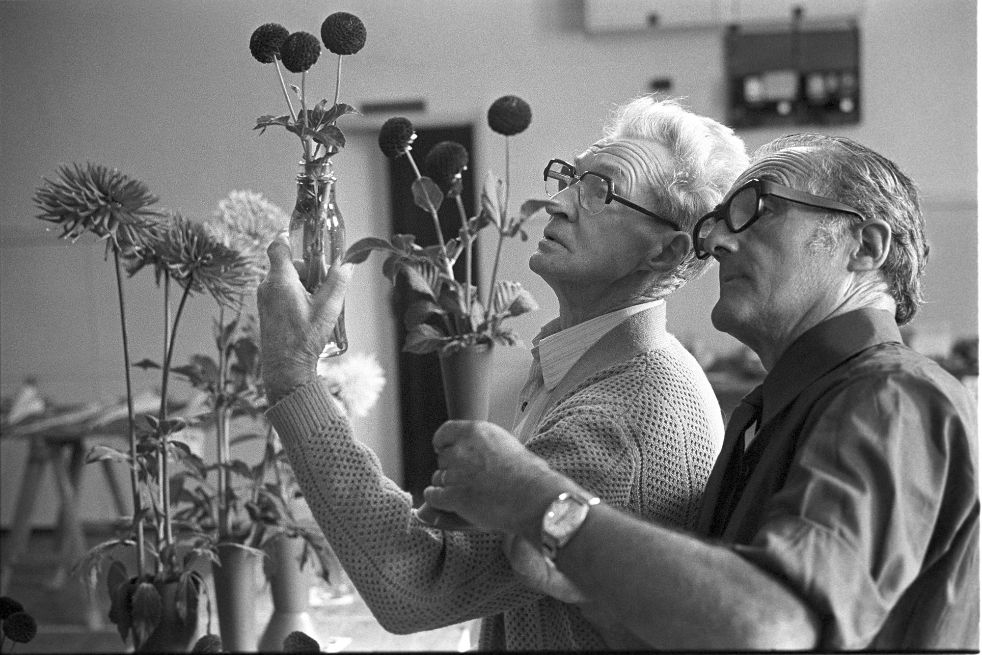 Judges at Conservative Flower Show, flowers.<br /> [Two men holding vases of flowers aloft, to judge entries at the Hatherleigh Conservative Club Flower Show.]