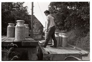 Graham Ward loading milk churns by James Ravilious